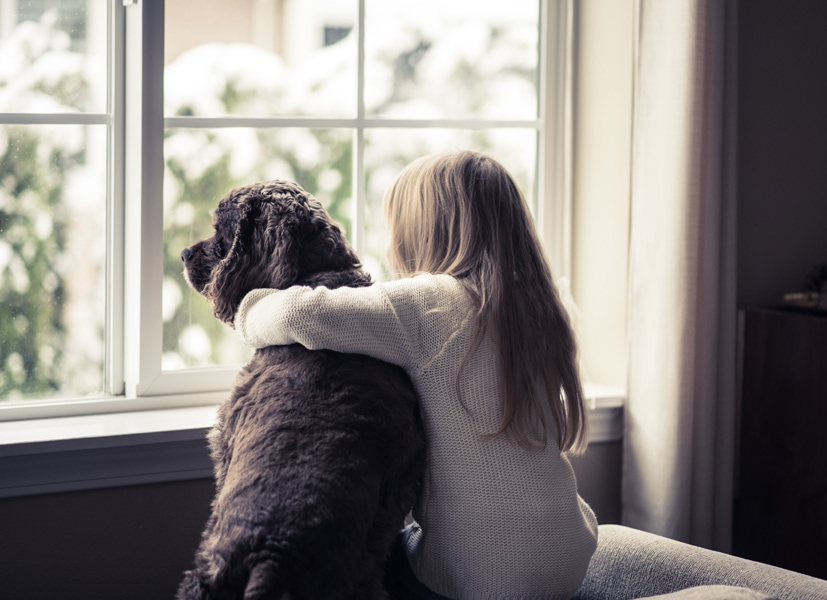 the basics of winter indoor air quality, Little girl and her dog looking out the window.